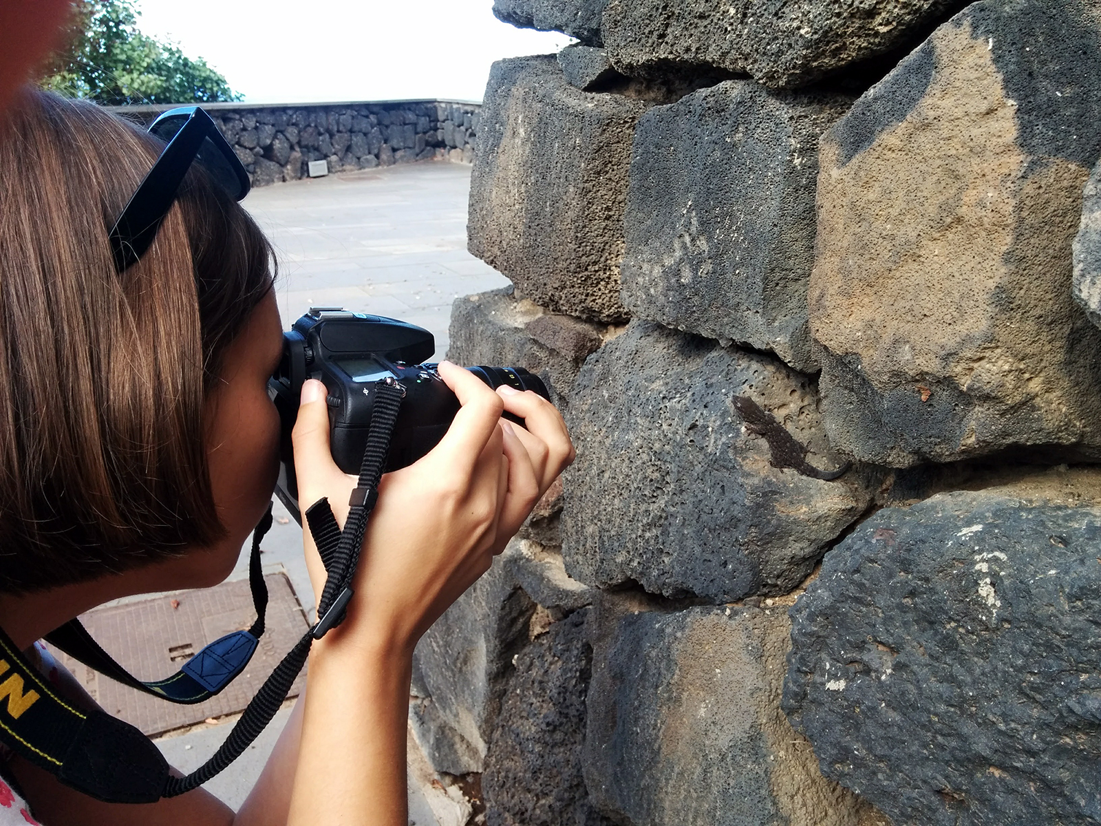 Gekko fotograferen