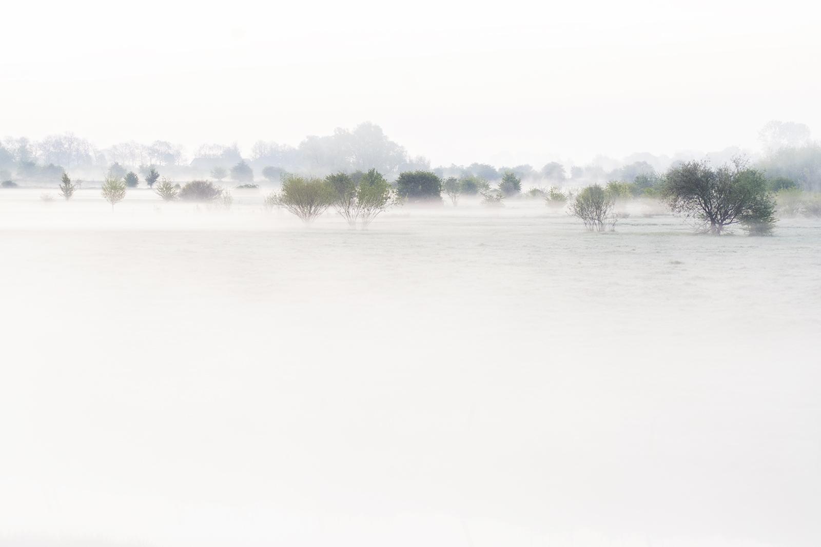 Wit landschapje