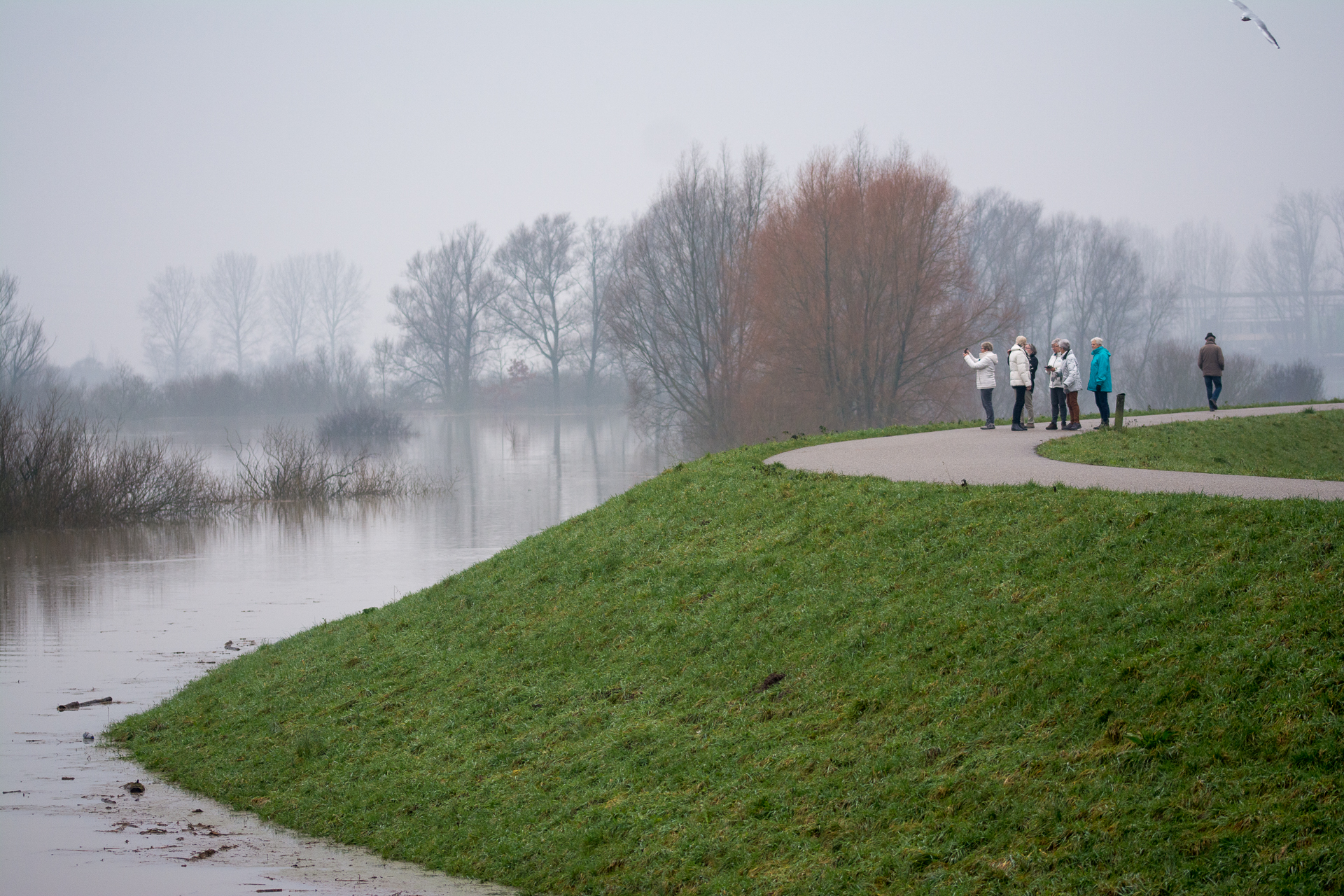 Hoog water in Wageningen
